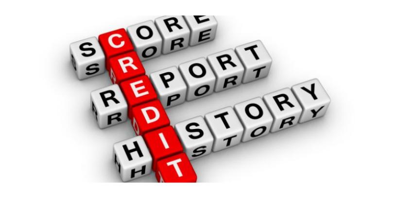 Credit Profile Number